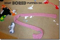 boredpuppymess1