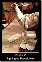 whippetpapertowels