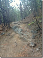 trailrunning2